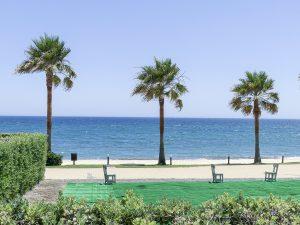 Properties For Sale in Aloha Spain