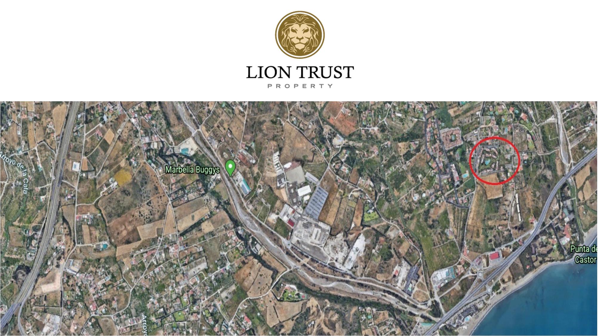 2a 1 - Lion Trust Spain